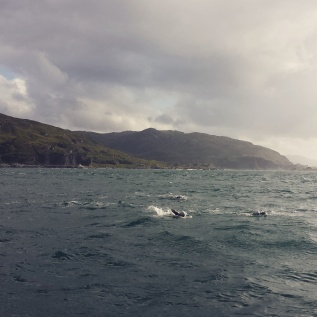 Scottish Corryvreckan Whirlpool Swim
