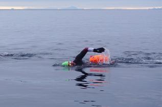 Moskstraumen Arctic Swim