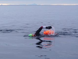 Moskstraumen Arctic WhirlpoolSwim