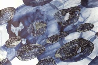 arctic-swim-drawing-5