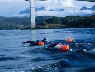 Saltstraumen Arctic WhirlpoolSwim